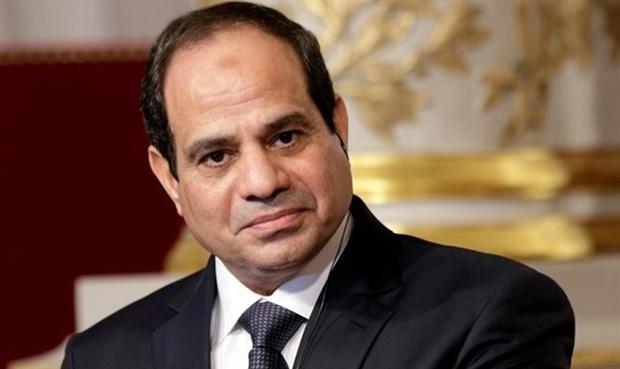 埃及总统今日开始对越南进行国事访问 hinh anh 1