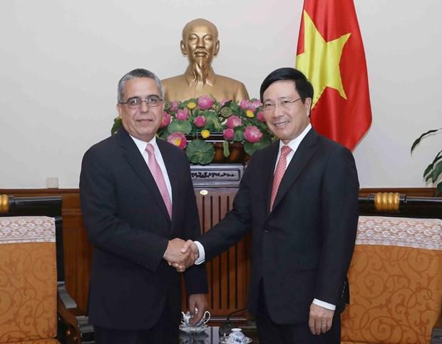 范平明副总理:越南始终支持古巴的革命事业 hinh anh 1
