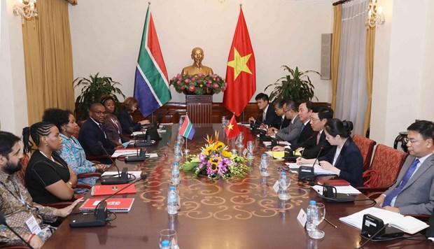 范平明与南非外交部长举行会谈 hinh anh 1