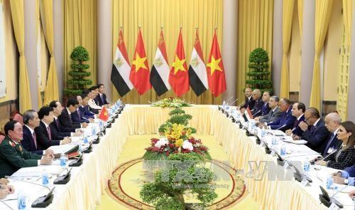 埃及总统访问越南 双方发表联合新闻公报 hinh anh 1