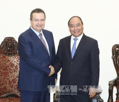 塞尔维亚副总理访越开辟两国关系新篇章 hinh anh 1