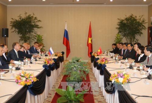 越俄政府间联合委员会第20次会议:进一步促进两国多领域合作 hinh anh 1
