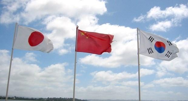 东盟与中日韩面向建设更广大的共同体 hinh anh 1