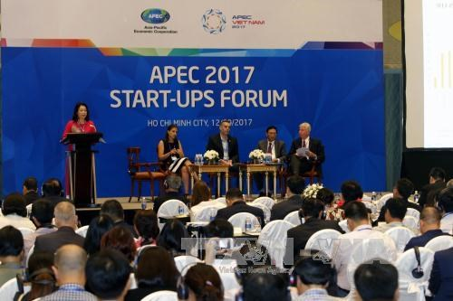 2017年APEC会议:共建活跃与对接合作的APEC创业共同体 hinh anh 1