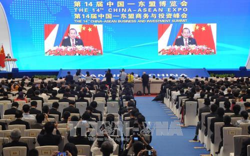 张和平副总理:越南一向重视并支持东盟与中国的合作 hinh anh 1