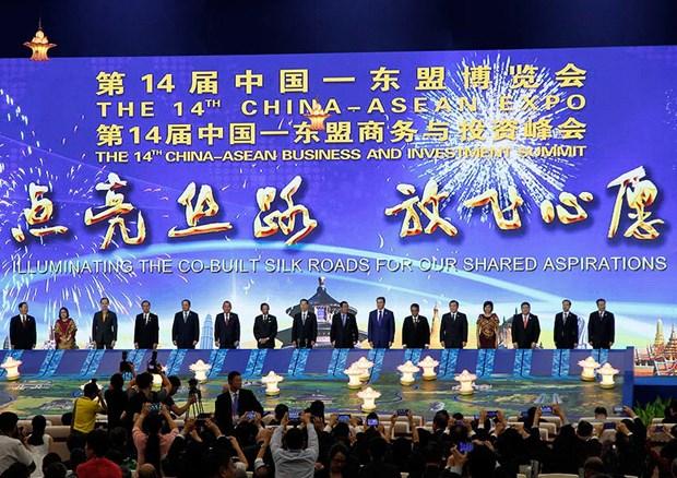 东盟——中国在诸多合作领域取得长足进步 hinh anh 1