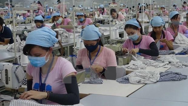2017年越南纺织品服装出口有望达305亿美元 hinh anh 1