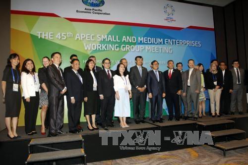 2017 APEC:中小型企业是亚太地区经济增长的动力 hinh anh 1