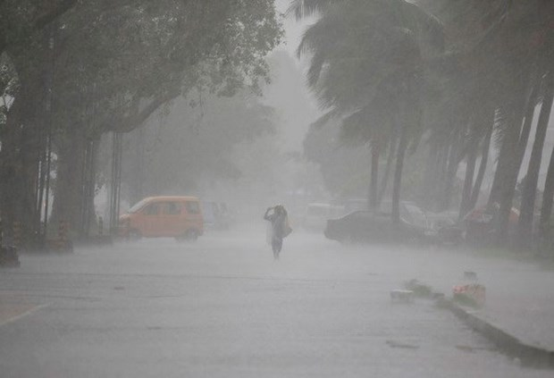 菲律宾东部遭台风龙王袭击 许多学校被迫停课 hinh anh 1
