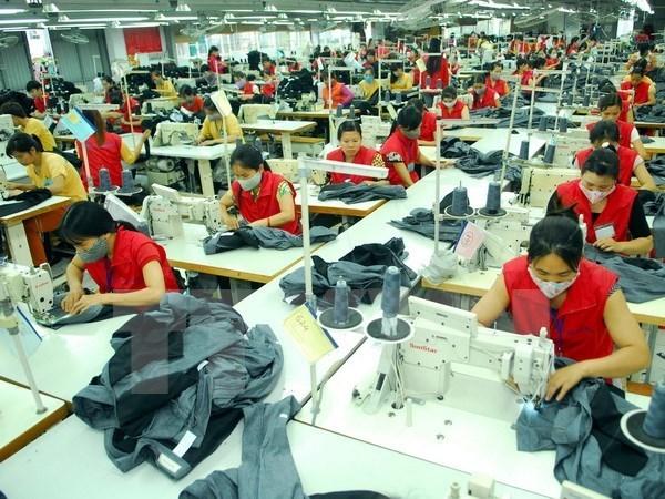 越南与欧亚经济联盟贸易投资合作潜力巨大 hinh anh 1