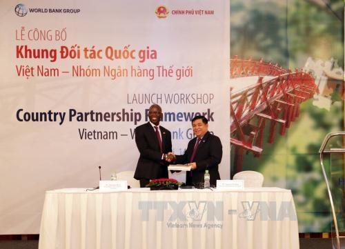 《越南国家伙伴框架(2017-2022年)》出炉 hinh anh 1