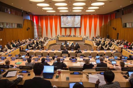 越南加入联合国40周年:越南为实现可持续发展目标作出努力 hinh anh 1
