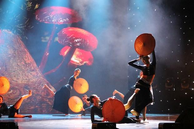 2017年国际舞蹈节在宁平省开幕 hinh anh 2
