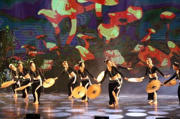 2017年国际舞蹈节在宁平省开幕 hinh anh 3