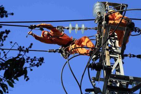 岘港市举行大面积停电应急演练 确保APEC会议安全可靠供电 hinh anh 1