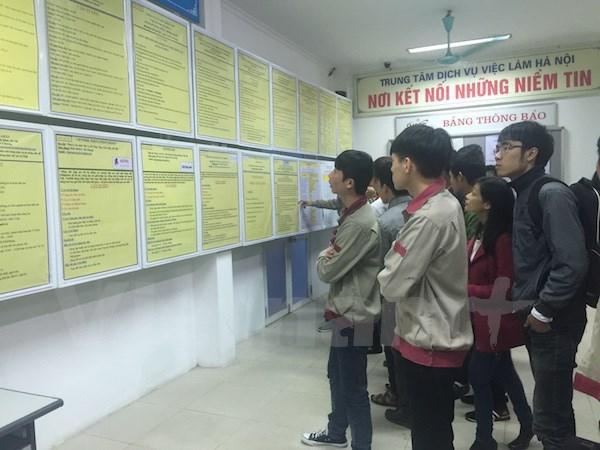 2017年第二季度越南劳动年龄人口失业率创5个季度来新低 hinh anh 1