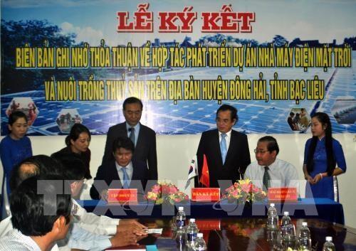 韩国集团将在越南建设太阳能发电厂 hinh anh 1