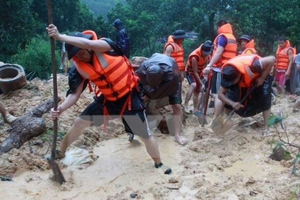 亚太经合组织第11届灾害管理高官会即将在乂安省举行 hinh anh 1