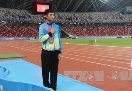 2017年东盟残运会:越南代表团摘下23枚金牌 hinh anh 1