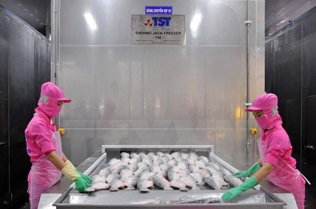 今年8月份越南查鱼对美国出口金额同比下降2600万美元 hinh anh 1