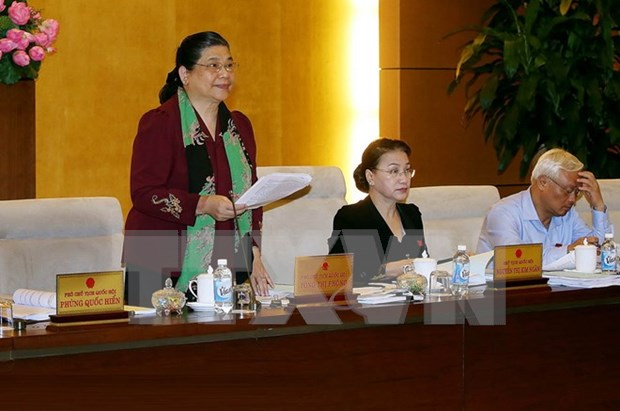 越南第十四届国会常委会第十四次会议:为人员和货物跨境运输创造便利 hinh anh 1