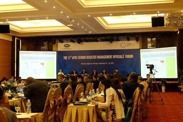 中国台北代表:越南防灾减灾中的科技利用得到突飞猛进的发展 hinh anh 1