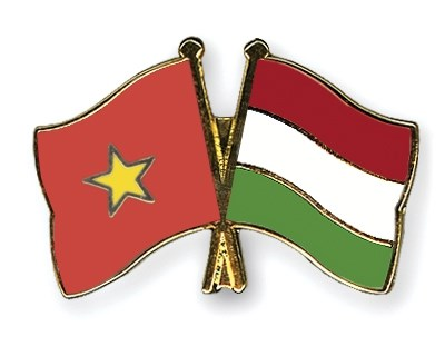 匈牙利总理即将对越南进行正式访问 hinh anh 1
