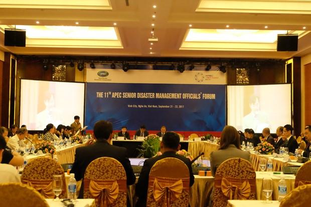 APEC第11届灾害管理高官会第一天新闻公报 hinh anh 1
