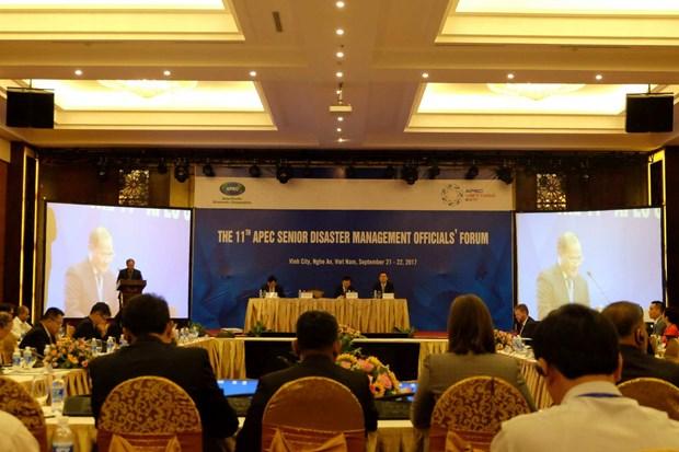 亚太经合组织第11届灾害管理高官会正式开幕 hinh anh 1