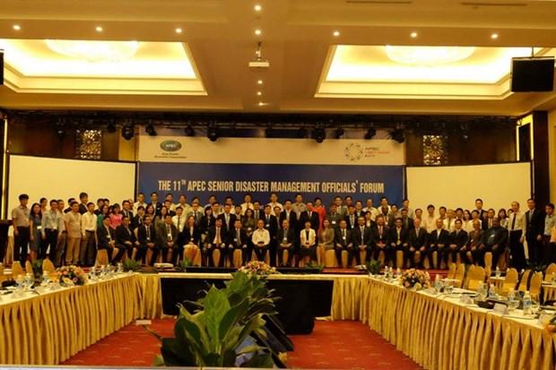 APEC各经济体代表分享防灾减灾经验 hinh anh 1