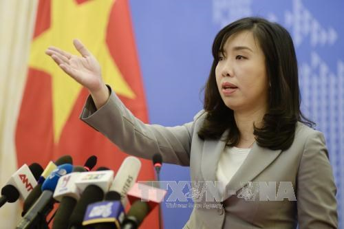 越南随时采取必要措施保护公民正当合法权利 hinh anh 1