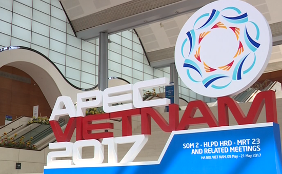 APEC 2017:体现越南的国际地位的机会 hinh anh 1