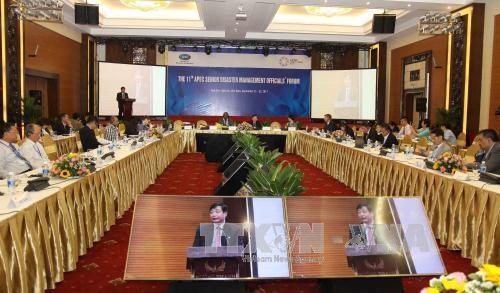 APEC第11届灾害管理高官会圆满完成各项既定议程 hinh anh 1