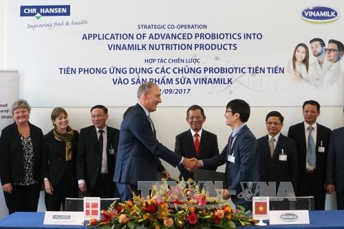 Vinamilk同世界著名菌种研究公司科汉森加强战略合作 hinh anh 1