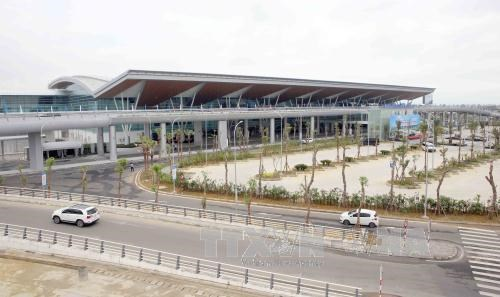 岘港市为2017年APEC领导人非正式会议做出充分准备 hinh anh 1