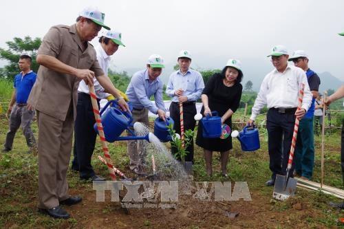 """越南举行集会响应""""2017年让世界更加清洁""""活动 hinh anh 2"""