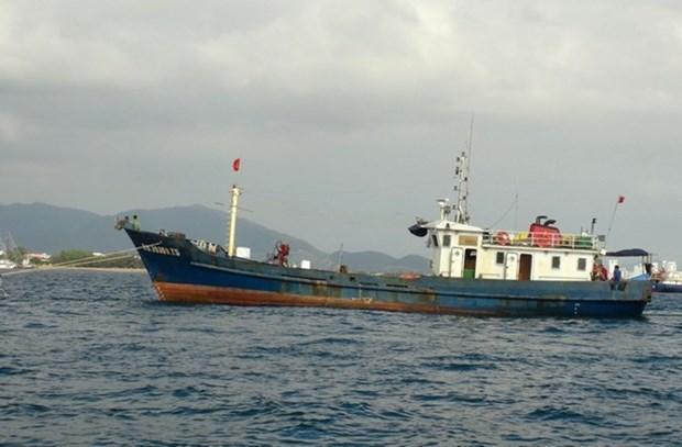 越南采取必要措施保护被菲律宾抓扣的越南渔民 hinh anh 1