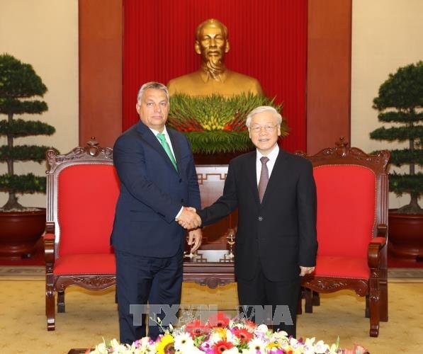 越共中央总书记阮富仲: 越南重视同匈牙利的传统友好关系 hinh anh 1