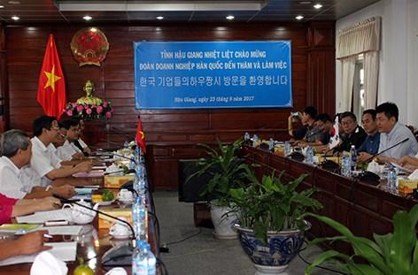 后江省与韩国企业加强高科技农业领域的合作 hinh anh 1