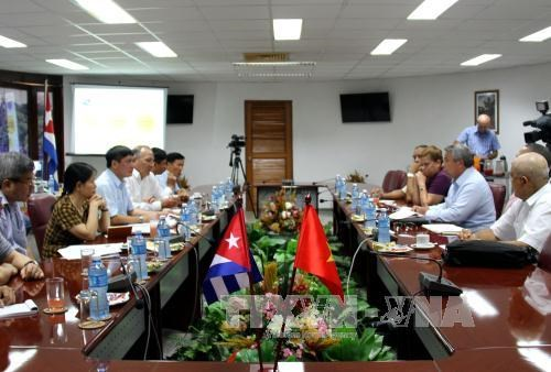 越南工会与古巴劳动者中央工会加强传统友好合作 hinh anh 1