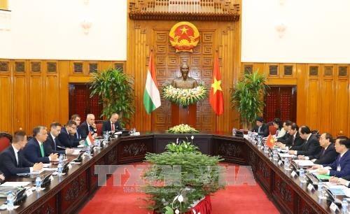 越南与匈牙利发表联合声明 hinh anh 1