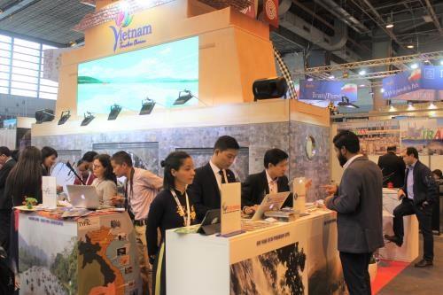 越南在国际市场上树立旅游品牌 hinh anh 1