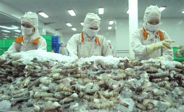 欧盟成为越南虾类的最大进口市场 hinh anh 1