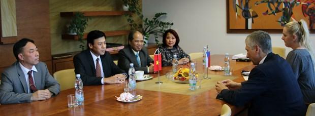 越南与捷克各地促进合作关系 hinh anh 1