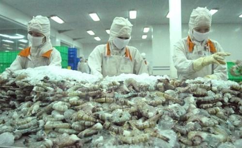 欧盟成为越南虾的最大进口市场 hinh anh 1