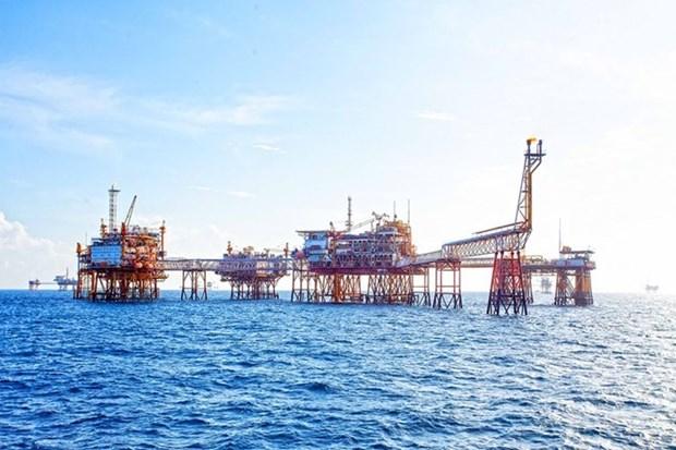 越苏石油联营公司天然气开采总量突破500亿立方米大关 hinh anh 1