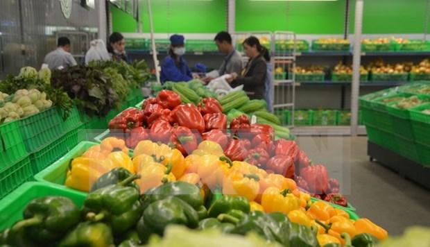 今年前9月越南蔬菜水果出口额约达26.4亿美元 hinh anh 1