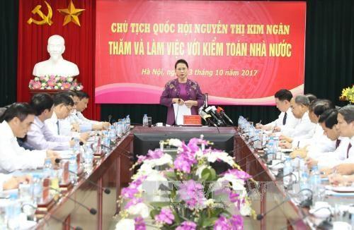 越南国会主席阮氏金银:应不断提高公开透明度 实现国家审计现代化 hinh anh 1
