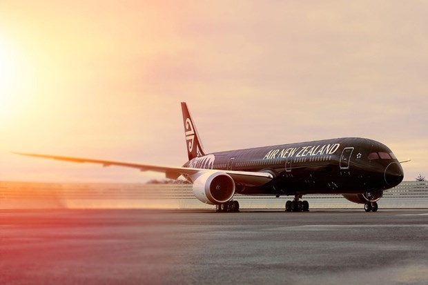 新西兰航空公司继续运用直达胡志明市的航线 hinh anh 1