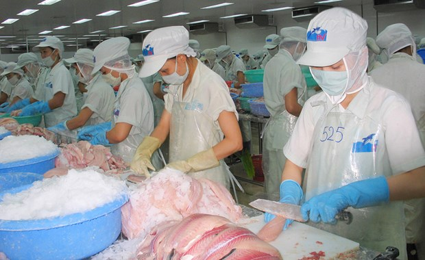 越南虾鱼类对美出口额有所下降 hinh anh 1